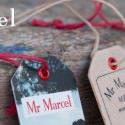 Mister Marcel