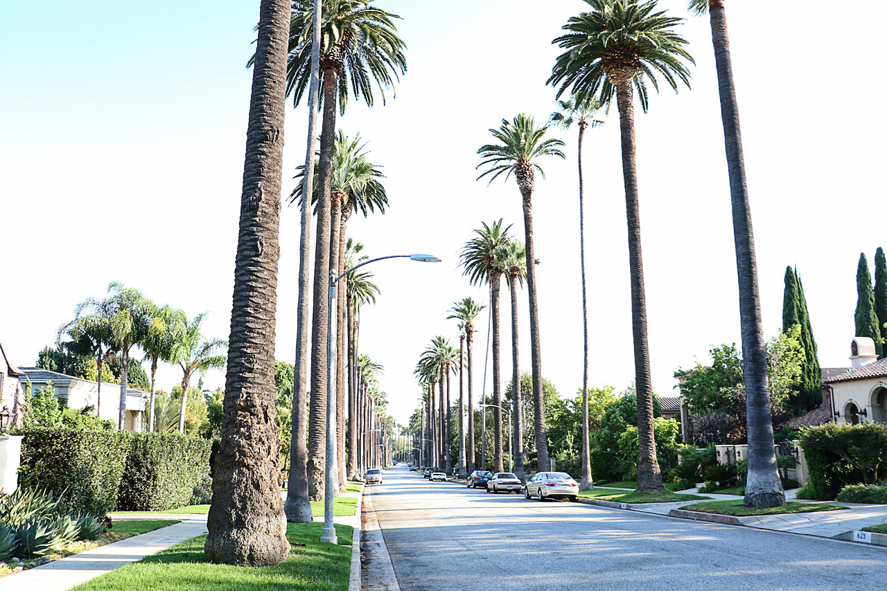 los-angeles-beverly-hills-avenue