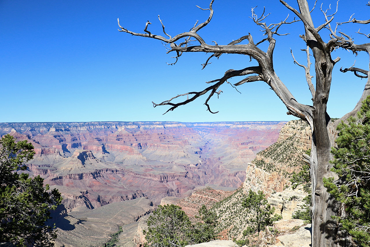 paysage-grand-canyon